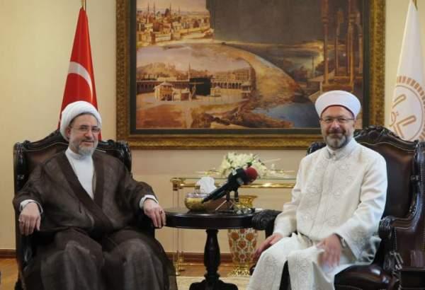 آیت الله اراکی در دیدار با رئیس سازمان دیانت ترکیه: مسئله فلسطین یکی از مهمترین مسائل امروز جهان اسلام است